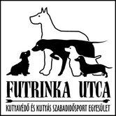 Német dog fajtamentés - Futrinka egyesület